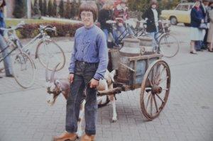 De hondenkar is als bokkenwagen een paar keer gebruikt tijdens historische optochten. Deze foto is tijdens een van deze optochten gemaakt. De bok wordt geleid door Frank Timmermans, de oudste zoon van Piet.