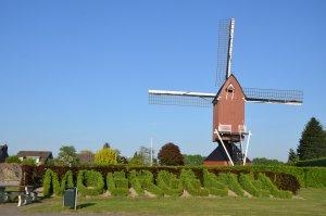 'Moergestel in Buxus' bij de molen.(Foto: Paul Spapens)